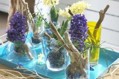 Hiacynt - zapach i kolor