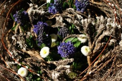 Rok ogrodnika - kwiecień