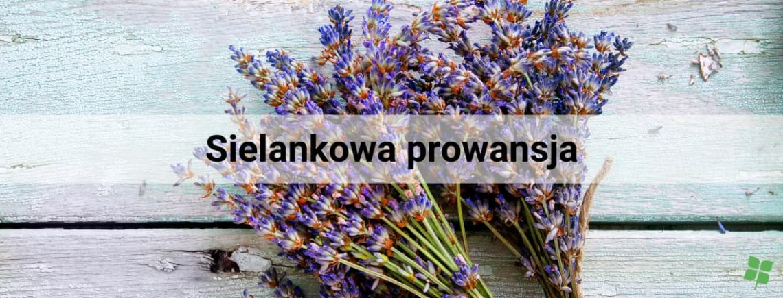 styl prowansalski