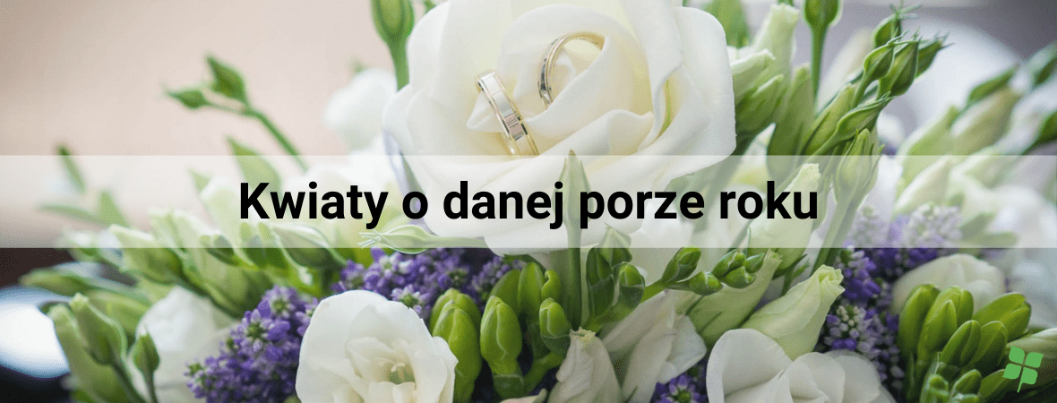 Najpopularniejsze kwiaty ślubne, czyli jakie kwiaty na ślub?