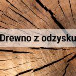 Eko-trendy we wnętrzach, czyli wyjątkowe meble z surowego drewna