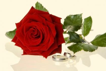Rocznice ślubów - róża
