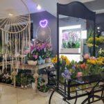 Kwiaciarnia Gniezno - Florystyka